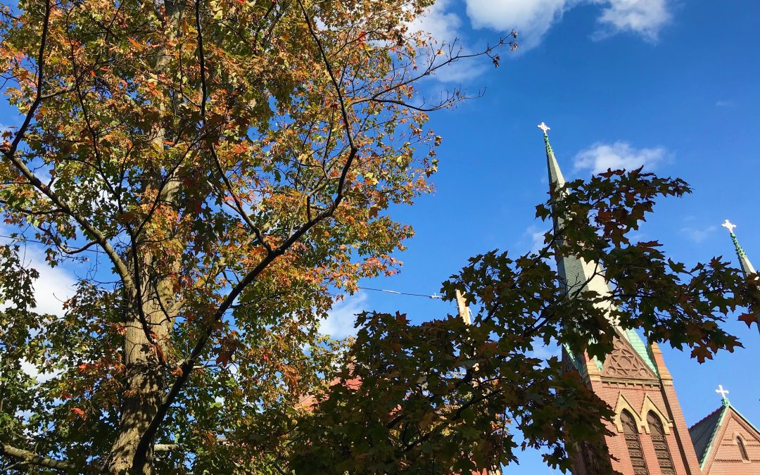A Day in the Life of a Surrogacy Case Manager: Following Fall Foliage in Massachusetts